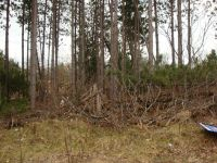 Home for sale: 1.83 Ac Amherst Ln., Lyndon Station, WI 53944