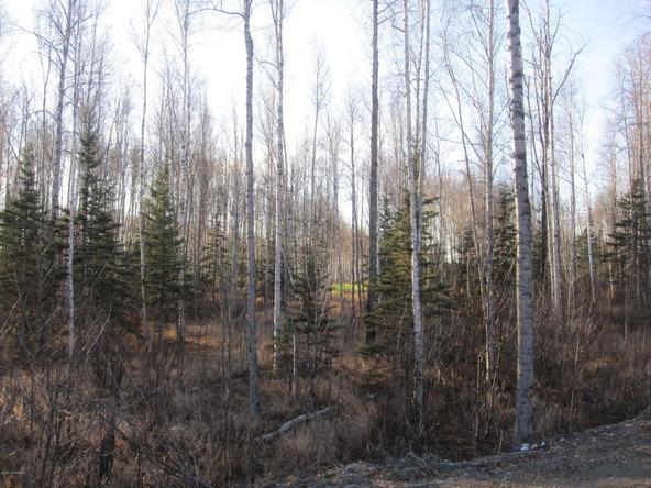 7603 S. Settlers Bay Dr., Wasilla, AK 99623 Photo 2