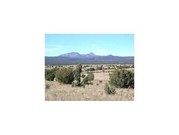 61 Juniperwood Ranch, Ash Fork, AZ 86320 Photo 5