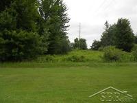Home for sale: 10827 S. Gera Rd., Birch Run, MI 48415