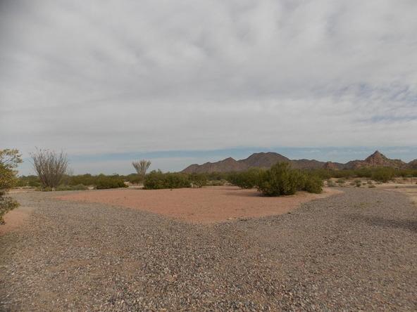 11969 N. Fantail Trail, Casa Grande, AZ 85194 Photo 51