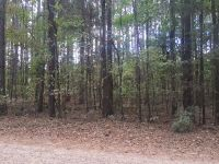 Home for sale: Lot 206 River Oaks Subdivision, West Point, MS 39773