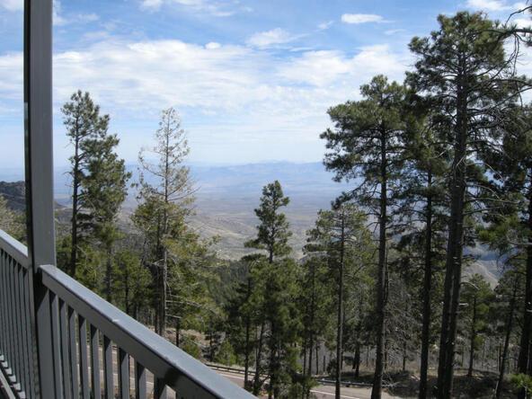 13067 N. Upper Loma Linda N, Mount Lemmon, AZ 85619 Photo 8