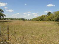 Home for sale: 000 Peanut Rd., Cottondale, FL 32431