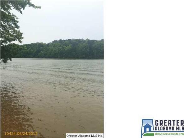 33 Stillwater Rd., Double Springs, AL 35553 Photo 2