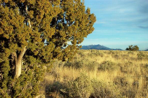 6218 S. Prairie Grass Ln., Williams, AZ 86046 Photo 10