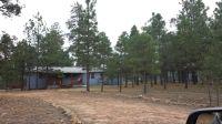 Home for sale: 2007 Sunset Trail, Overgaard, AZ 85933