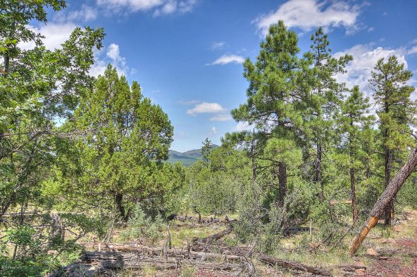 1676 Canyon View Loop, Williams, AZ 86046 Photo 2