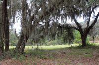 Home for sale: 805 Hidden Lagoon Ln., Shellman Bluff, GA 31331