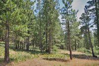 Home for sale: 332 Gold Nugget Ln., Graeagle, CA 96103