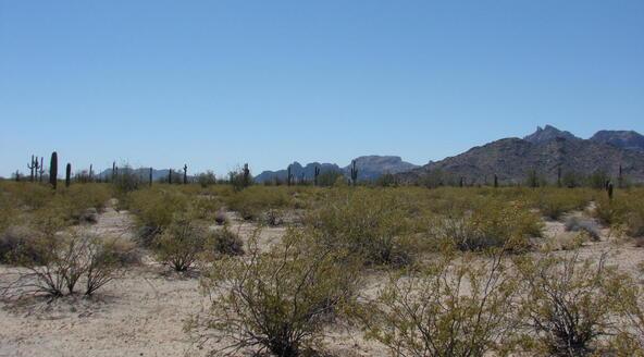 3xx N. 557th Avenue, Tonopah, AZ 85354 Photo 17