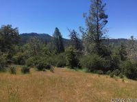 Home for sale: South Morning Glory Rd., Mountain Ranch, CA 95246