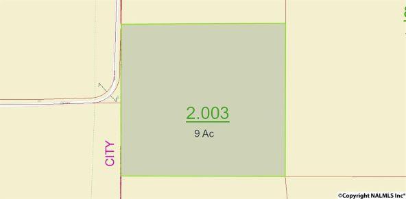 310 County Rd. 590, Fort Payne, AL 35968 Photo 8