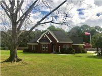Home for sale: 8155 East Jim Mcneil Loop Rd., Grand Bay, AL 36541