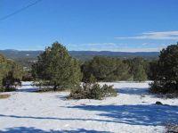 Home for sale: 8 Eagle Ridge, Ilfeld, NM 87538