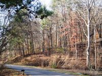Home for sale: Lot 44-Greasy Cove Rd., Cosby, TN 37722