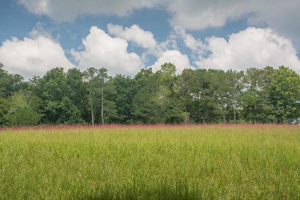 1374 County Rd. 641, Mentone, AL 35984 Photo 35