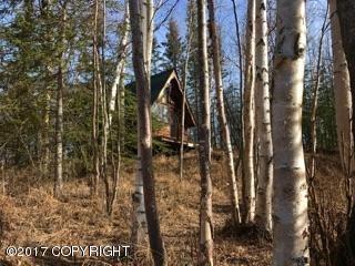 2453 E. Carlson Rd., Wasilla, AK 99654 Photo 17
