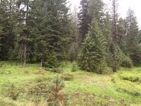 Home for sale: Lot 10 Little Salmon Rd., New Meadows, ID 83654