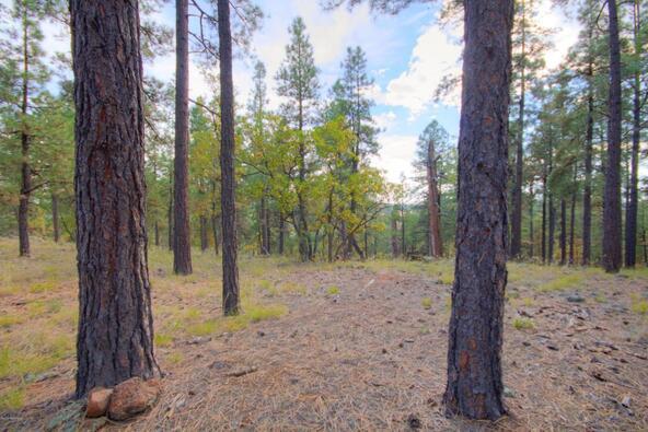 8100 W. Dk Ranch Rd., Flagstaff, AZ 86005 Photo 17