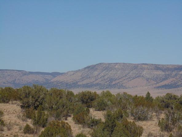 57174 N. Bridge Canyon Parkway, Seligman, AZ 86337 Photo 5