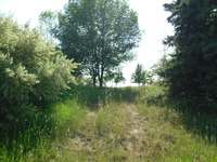 Home for sale: Anderfind, Ludington, MI 49431