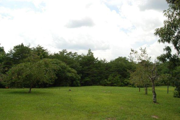 70 County 944 Rd., Mentone, AL 35984 Photo 57