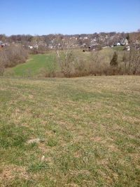 Home for sale: 1-A Upper Jackstown Rd., Carlisle, KY 40311