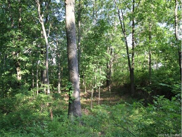 0 Wiltshire Dr., Columbia, IL 62236 Photo 15
