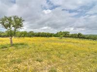 Home for sale: 11704 Oak Branch Dr., Austin, TX 78737