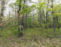 Home for sale: Lot 15 Bloss Rd., Canadensis, PA 18325