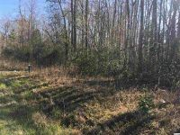Home for sale: Lot 3 Hwy. 66, Loris, SC 29569
