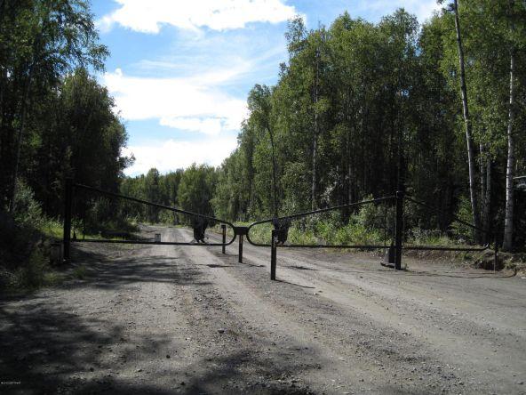 19994 E. Goshawk Way, Willow, AK 99688 Photo 48