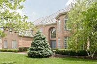 Home for sale: 21601 North Meadowlark Dr., Kildeer, IL 60047
