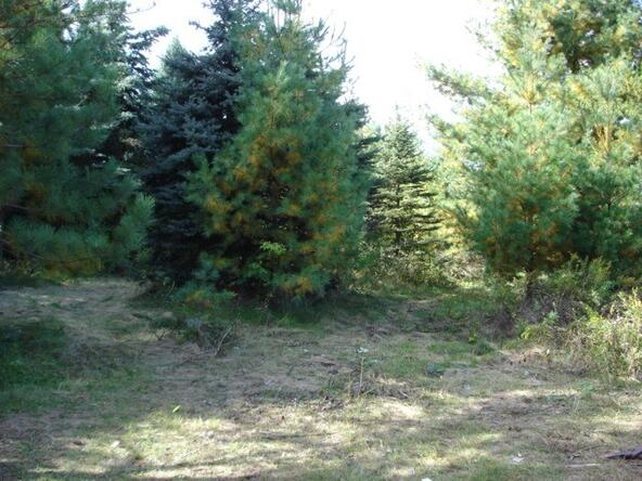 .87 Acres State Hwy. 17, Merrill, WI 54452 Photo 3