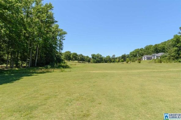 358 Quail Ridge Rd., Oneonta, AL 35121 Photo 47