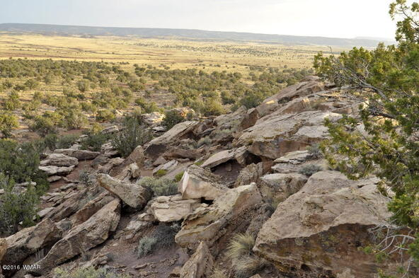 297 Woodridge Ranch, Concho, AZ 85924 Photo 16