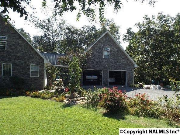154 County Rd. 594, Sylvania, AL 35988 Photo 48