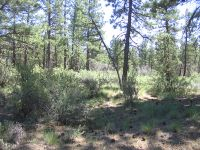 Home for sale: Lot 12 Moccasin Ln., Sprague River, OR 97639