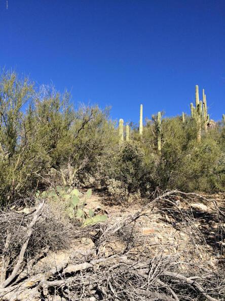 45 N. Cottonwood Canyon Rd., Cave Creek, AZ 85331 Photo 32