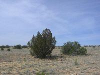 Home for sale: Lot 446 Chevelon Canyon Ranch, Overgaard, AZ 85933