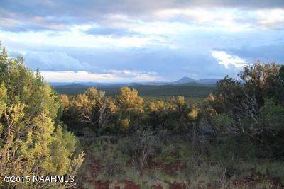 957 Westwood Ranch, Seligman, AZ 86337 Photo 11