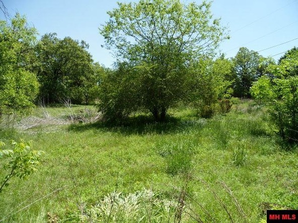 2706 Hwy. 5 North, Mountain Home, AR 72653 Photo 4