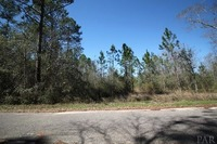 Home for sale: 00 Rube Pace Rd., Milton, FL 32583