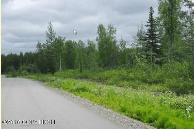 5280 S. Horseshoe Rd., Big Lake, AK 99652 Photo 8