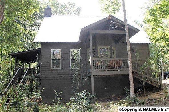 493 Cove Rd., Mentone, AL 35984 Photo 46