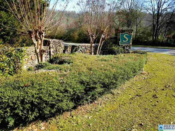 206 Bridge Dr., Birmingham, AL 35242 Photo 1