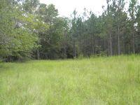 Home for sale: 0 Temple Chapel Rd., Jacksonville, GA 31544