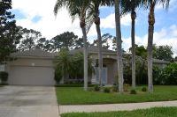 Home for sale: 6092 Pheasant Ridge Dr., Port Orange, FL 32128