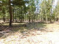 Home for sale: Tbd Off E. Bar-D Ranch, Iron Mountain, MI 49801